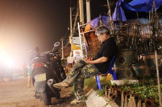 """Chủ mai Bình Định """"đổ bộ"""" QL1 chong đèn, dựng lều chào bán mai tết sớm ảnh 9"""