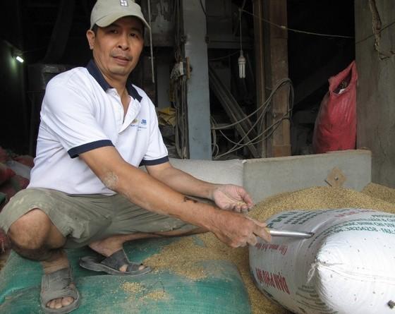 Chủ máy xay xát ở Bình Định đã tìm thấy người quên vàng trong bao lúa ảnh 1