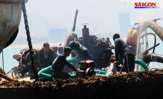 """Ra biển xem """"vòi bạch tuộc"""" kéo xác tàu ngàn tấn bị đắm ảnh 2"""