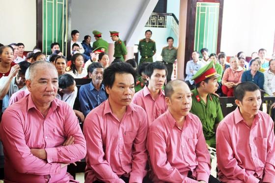 """Trả hồ sơ, điều tra bổ sung """"đại án"""" phá rừng Bình Định: ảnh 4"""