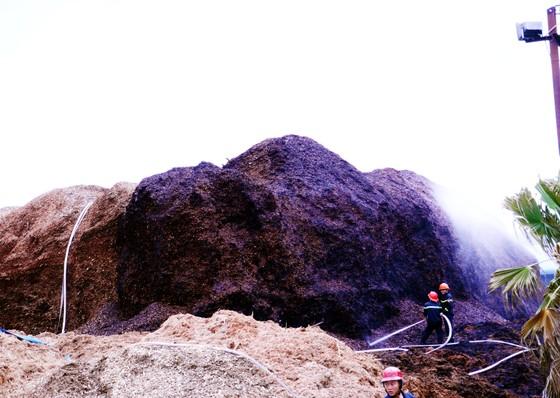 Cháy lớn tại bãi dăm gỗ trị giá trên 100 tỷ đồng ảnh 2
