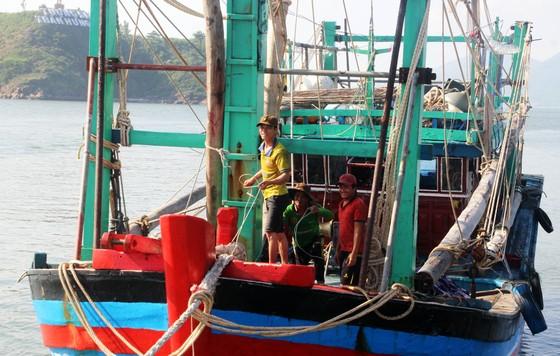 Cảnh sát biển cứu tàu bị nạn cùng 7 ngư dân Bình Định vào bờ an toàn ảnh 4