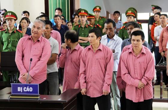 Phá rừng quy mô lớn, 9 bị cáo bị phạt 81 năm tù, buộc bồi thường 4,7 tỷ đồng ảnh 1