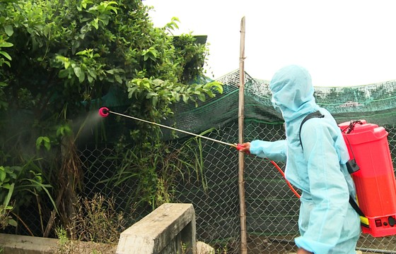 """Xuất hiện """"ổ"""" dịch cúm H5N6 có độc lực rất mạnh tại Phú Yên ảnh 5"""