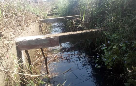 Thanh giằng kênh mương làm bằng bê tông cốt...gỗ  ảnh 5