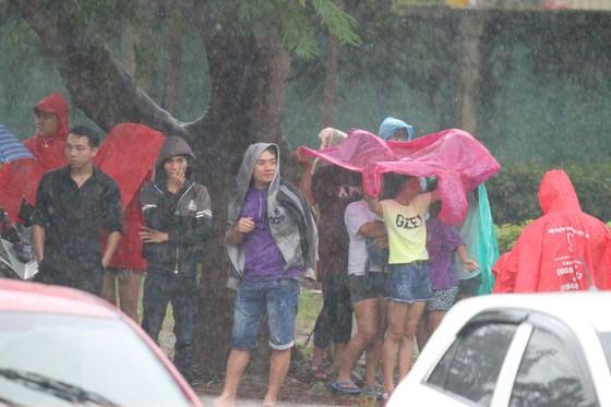 Người hâm mộ Bình Dương đội mưa đón xem thầy trò HLV Park Hang-seo tập ảnh 2