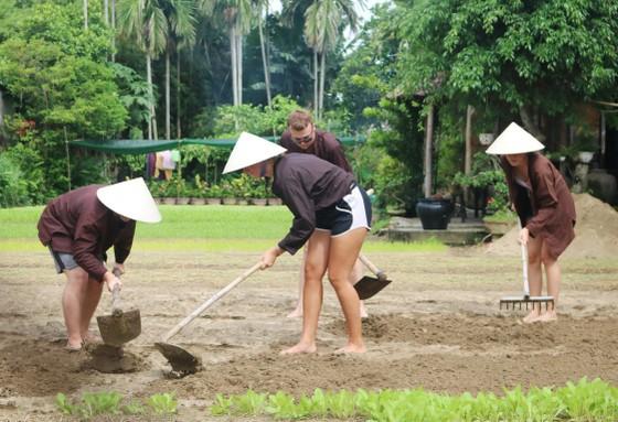 Du lịch làm nông dân ảnh 3