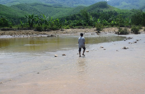 Ráo riết tìm nguyên nhân cá chết hàng loạt trên sông Bồng Miêu ảnh 2