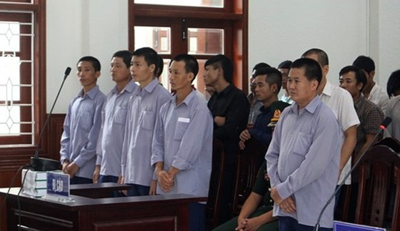 Phá rừng pơmu Quảng Nam, nguyên Đồn phó Đồn Biên phòng lãnh 4 năm tù giam  ảnh 3