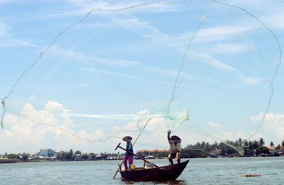 Phối hợp quản lý lưu vực sông Vu Gia – Thu Bồn ảnh 1