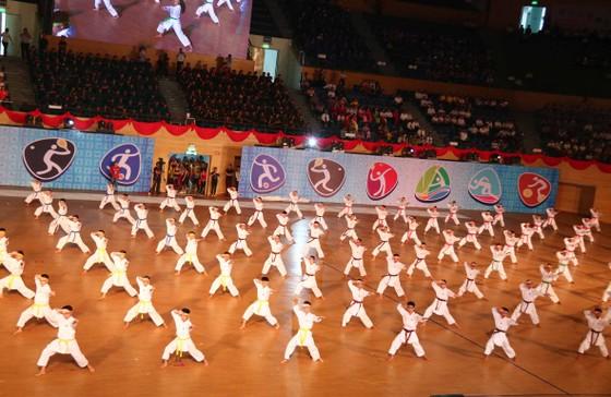 Đà Nẵng khai mạc Đại hội Thể dục Thể thao lần thứ VIII ảnh 2