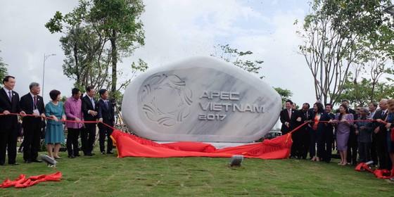 """Đà Nẵng mở rộng công viên hơn 8.000m2 """"đất vàng"""" ảnh 1"""