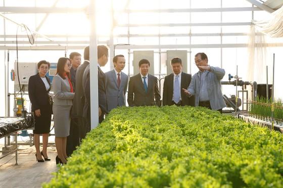 Nguyên đại sứ Nhật Bản tại Việt Nam làm Trưởng văn phòng đại diện của FLC  ảnh 2