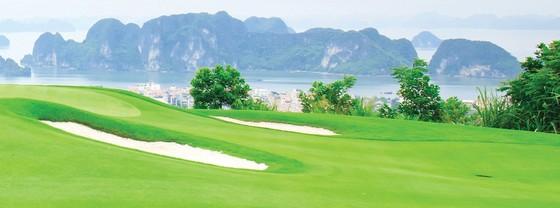 Chủ tịch FLC Trịnh Văn Quyết: Mỗi tỉnh sẽ có ít nhất 1 sân golf trở lên ảnh 3