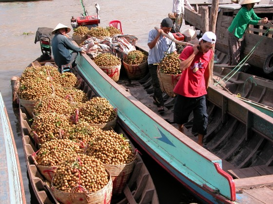 Xuất khẩu rau quả hướng tới 4,5 tỷ USD ảnh 2