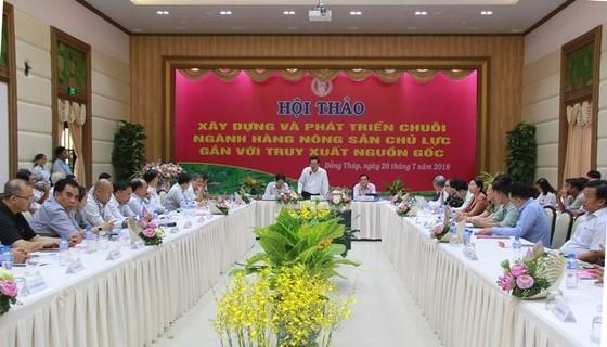 Đồng Tháp hợp tác TPHCM phát triển nông sản chủ lực ảnh 1