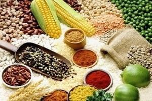 Giá lương thực lên cao nhất trong 10 tháng ảnh 1