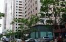 Hà Nội: giá dịch vụ chung cư 16.500 đồng/m2 ảnh 1