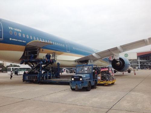 VNA và Airbus Foundation kết hợp làm từ thiện ảnh 1