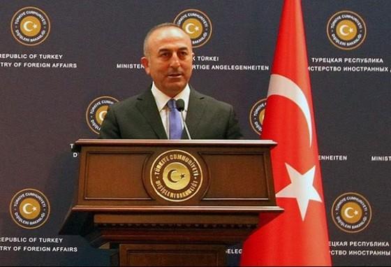 Thổ Nhĩ Kỳ đề nghị Nga bỏ trừng phạt ảnh 1