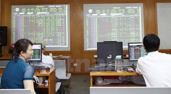 STG tăng vốn gấp đôi đầu tư dự án Phú Mỹ ảnh 1