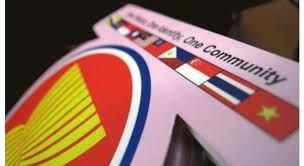 Việt Nam giảm dần nhập siêu từ ASEAN ảnh 1