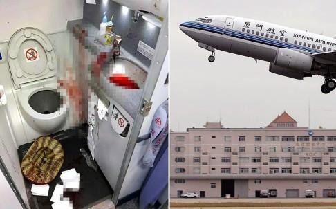 Hành khách cố tự tử trong toilet máy bay ảnh 1