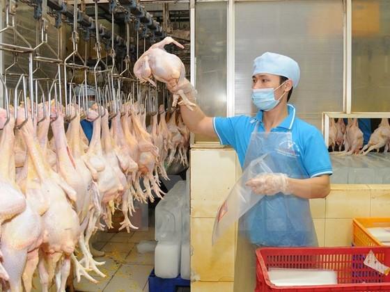 Yêu cầu kiểm soát thị trường thực phẩm Tết ảnh 1