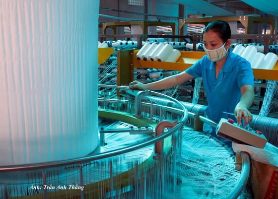 Công nghiệp chế biến, chế tạo: Tín hiệu khả quan ảnh 1
