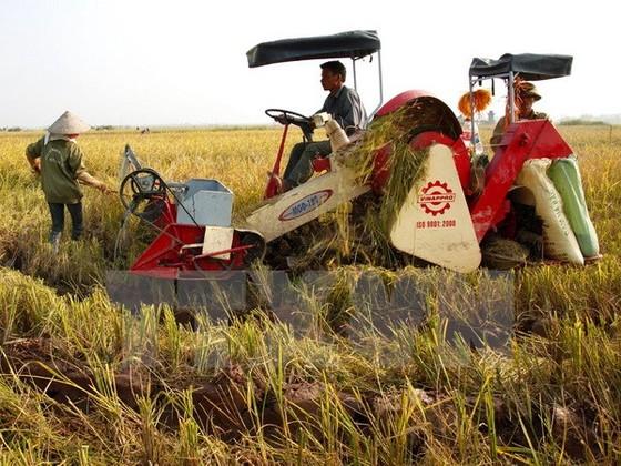 Nông nghiệp HN: Tiến trình cơ giới hóa chậm ảnh 1