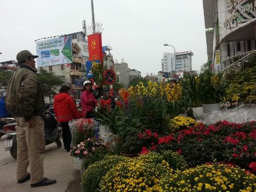 Hoa Trung Quốc lấn lướt chợ Tết ảnh 1