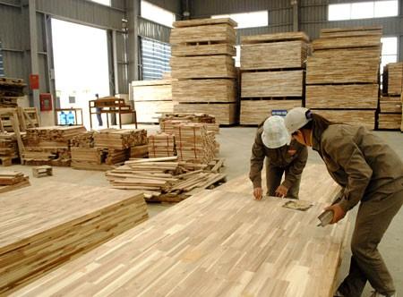 Đưa xuất khẩu gỗ thành ngành mũi nhọn ảnh 1