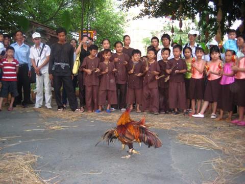 TPHCM giới thiệu văn hóa ẩm thực Nam bộ ảnh 2
