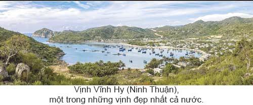 Quyến rũ biển Việt Nam ảnh 9