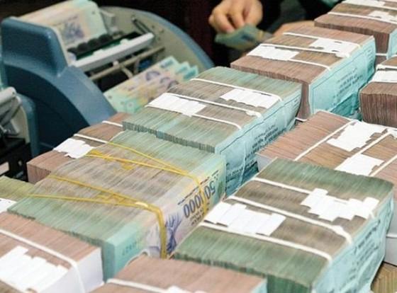 Không xóa nợ thuế 1.000 tỉ đồng cho DNNN ảnh 1