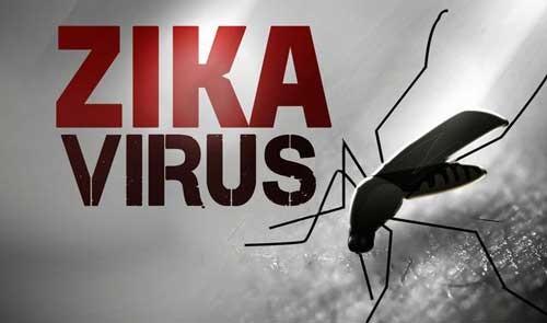 Nhiều người ngủ mùng ban đêm nên dễ mắc Zika ảnh 1
