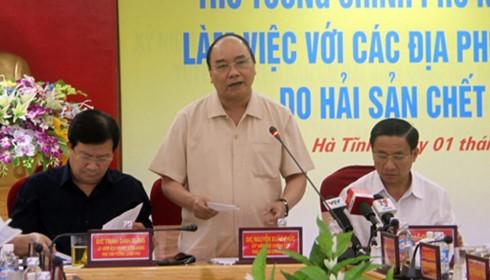Thủ tướng chỉ đạo báo cáo việc xả thải Formosa ảnh 1