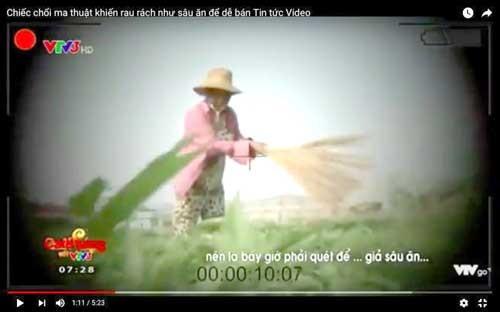VTV xin lỗi và đình chỉ phóng viên vụ cây chổi quét rau ảnh 1