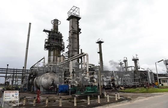 Dư cung dầu sẽ giảm mạnh vào cuối năm nay ảnh 1