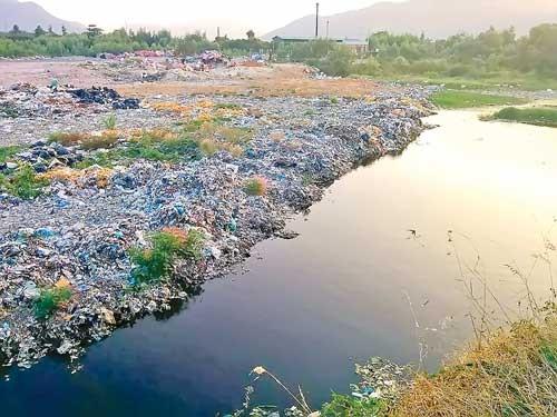 Người dân kêu cứu vì ô nhiễm bãi rác ảnh 1