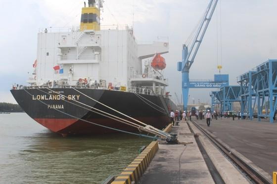 Đồng Nai: Cảng Gò Dầu đón tàu 30.000 DWT ảnh 1