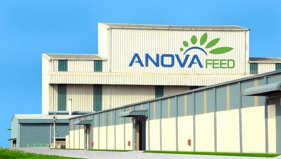 IFC đầu tư Công ty Thức ăn Chăn nuôi Anova ảnh 1