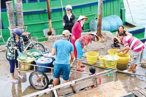 Nam Du - Vươn vai khơi dậy tiềm năng ảnh 3