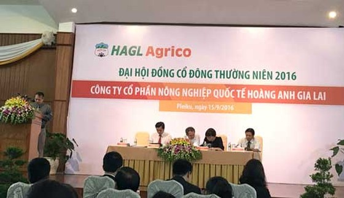 HAGL dự kiến bán đi 20.000 ha cao su ảnh 1