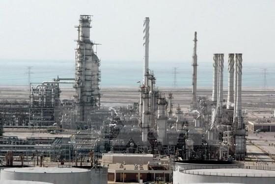 Dư cung, dầu mỏ đóng băng sản lượng 6-8 tháng ảnh 1