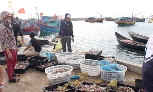 3.000 tỷ đồng bồi thường ngư dân 4 tỉnh miền Trung ảnh 1