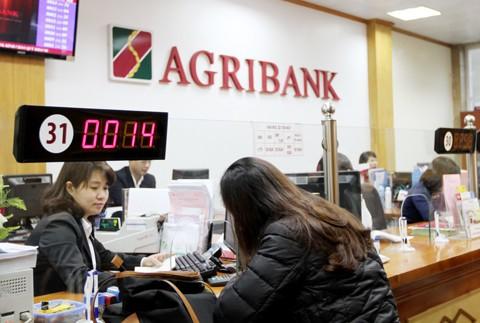 Agribank khẳng định vai trò đầu tàu ảnh 2