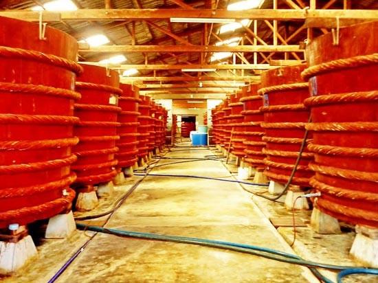Ngăn ngừa việc gây hại SX nước mắm truyền thống ảnh 1