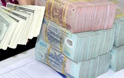 Có nên giao VAMC bán đấu giá tài sản nợ xấu? ảnh 1