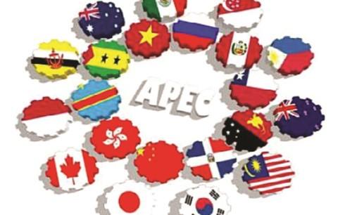 APEC2017 thúc đẩy tăng trưởng, bền vững ảnh 1